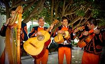 Musica Guanajuato.png