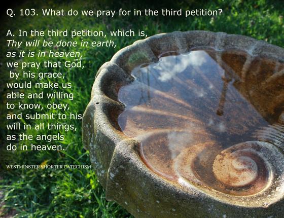What shall I pray?