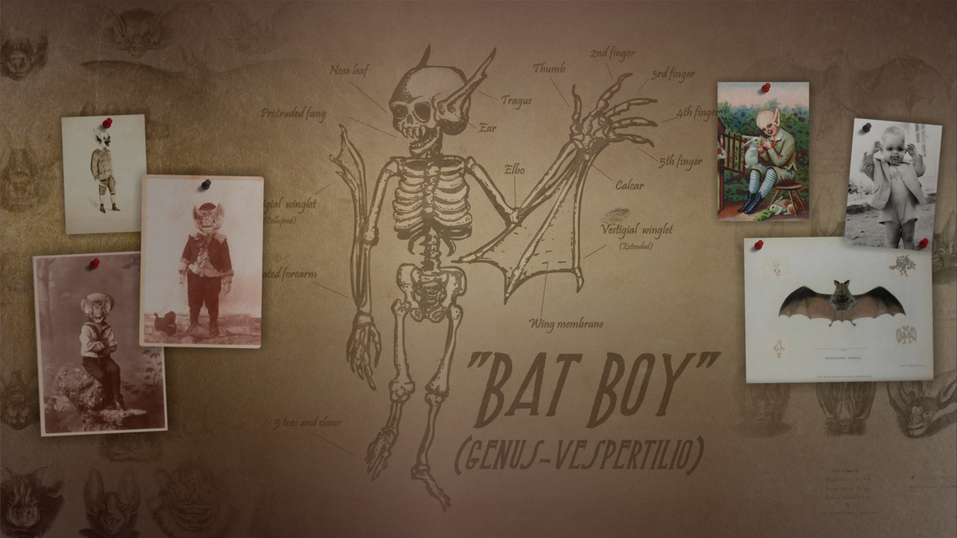 Bat Boy Production Art