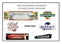 Sponsors - juvenile draft.jpg