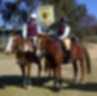 Pony club 3 - cropped.jpg