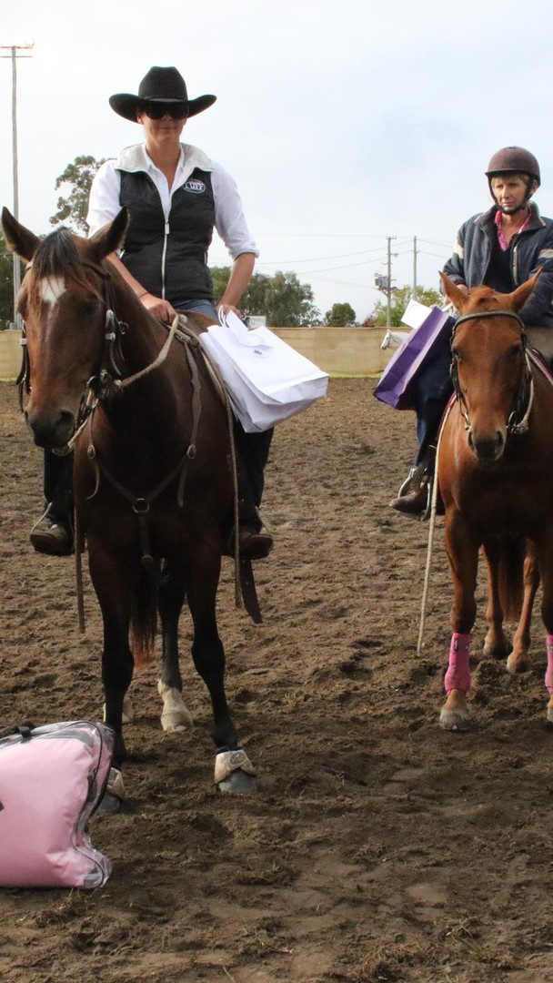 Winner of the Wholsale Horsewear House M