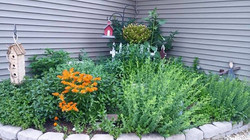 One of our herb gardens