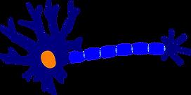 neuron-305772_1280.png
