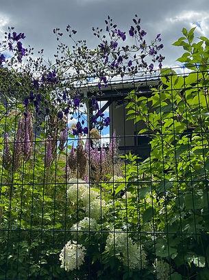 габионы в ландшафтном дизайне в саду на фото 15432