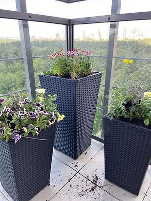 Фото озеленения балкона 00004.jpg