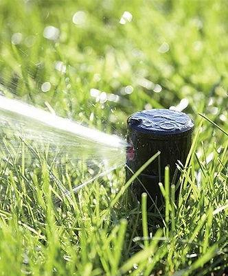 Фото ротора для полива газонов