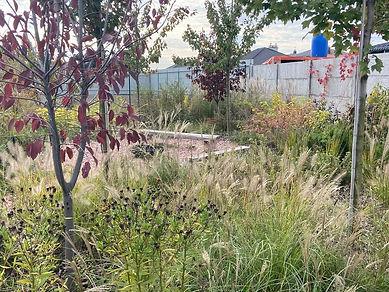 Детская площадка в окружении пряных трав