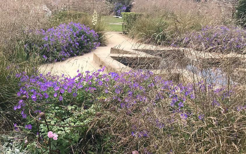 Фото ландшафтного дизайна с применением трав и водоема. Цена такого проекта зависит от использкемых матералов и подбора растений.