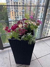 озеленение балкона фото 211