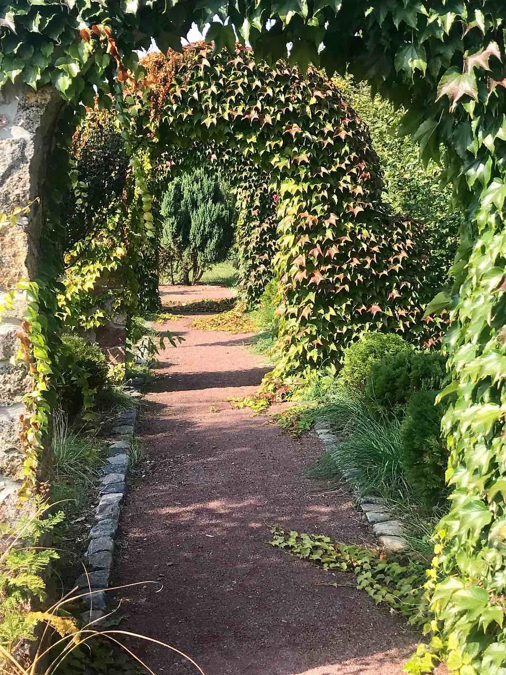 Фото благоустройства сада с использованием арок