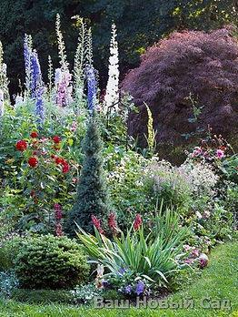 Фотография красивого сада и его цветников