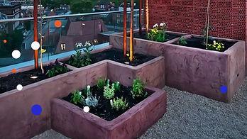 Видео о компании предоставляющей услуги озеления балкона и озеленения крыши.  У компании вы можете заказать услугу озеленения баолклна или озеленения крыши. В списке услуг вертикальное озеленение и многое другое