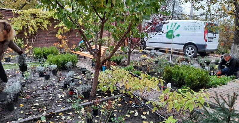 Сад в Английском стиле – Фото переделки сада на даче