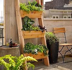 Пример вертикалного озеленения с применением изящной стойки для цветов
