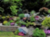 альпийская горка на фото с подпорной стенкой и многолетниками в камнях