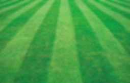 Пример монтажа рулонного спортивного газона в Киевской области. Заказать проект и купить устройство спортивного или универсального элитного рулонного газона и его укладку по оптимальной стоимости прямо из питомника можно у ландшафтной компании Ваш Новый Сад.  В цену за квадратный метр включен весь комплекс работ