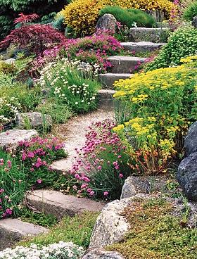 Устройство альпийской горки с каменными ступенями и цветущими растениями