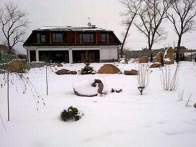 Фотография зимнего сада с растениями