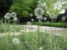 Студия ландшафтного дизайнаВаш Новый Сад представлят вашему вниманию фото одного из проектов в стиле новой волны с использованием луковых, самшитов и других трав