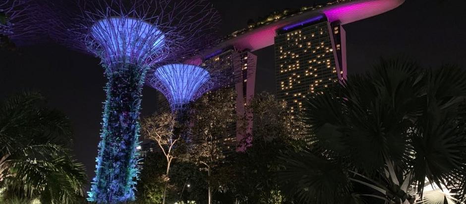 Футуристические сады Сингапура в программе путешествия в марте 2020