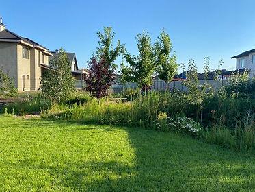 современный ландшафтный дизайн сада на фото 1211