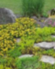 фото оформления маленькой альпиской горки с камнями