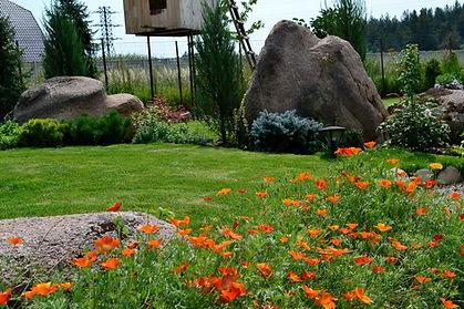 На фото камни для сада