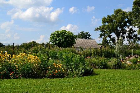 Ландшафтный дизайн в киевской области с пышными посадками растений