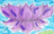 purple lotus m11.3.26.20.a.jpg