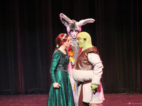 SHREK- Fiona, Donkey & Shrek