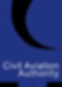 CAA TBD Logo.png