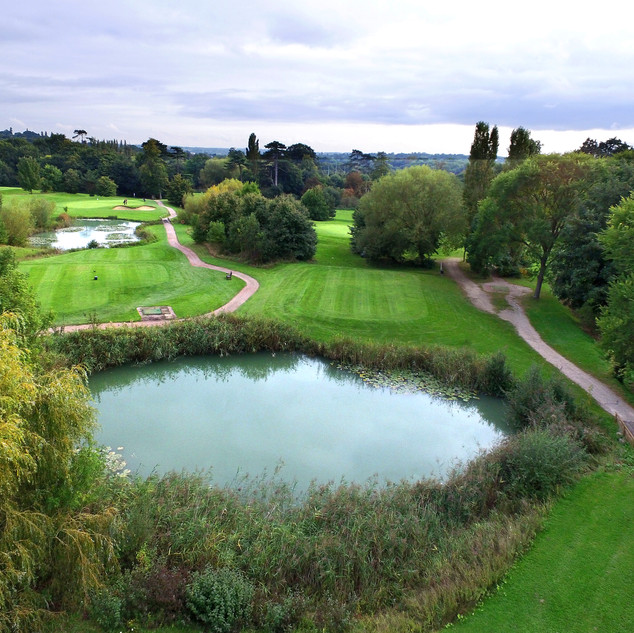 Property aerial images by drone