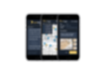 Pinboop Punchlist Speed & Simplicity, Punchlist App, Punch List App, Completion List App