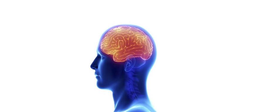 NEUROLOGIST CONSULTATION