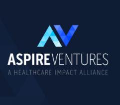 Aspiring Ventures by FAY BOCHEK