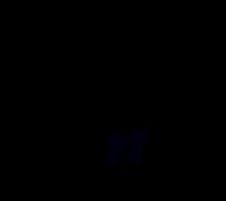 2020Logo Hundesalonblack.png