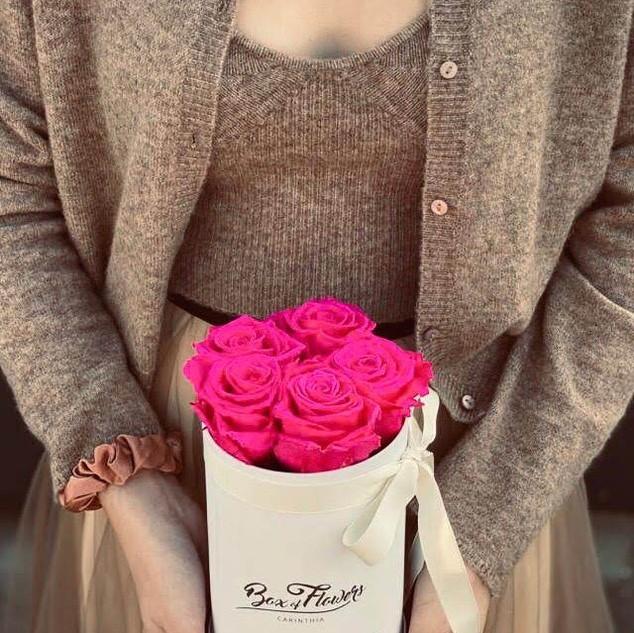 Box of Flowers Carinthia