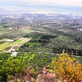 valley of Eyrota