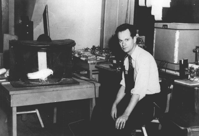 The life and work of b f skinner