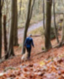 woman-hiking-with-dog-min-1_edited.jpg