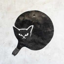 まるい黒猫