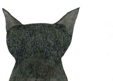 クロネコ/Black Cat