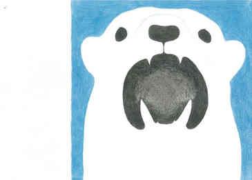 シロクマ/Polar Bear