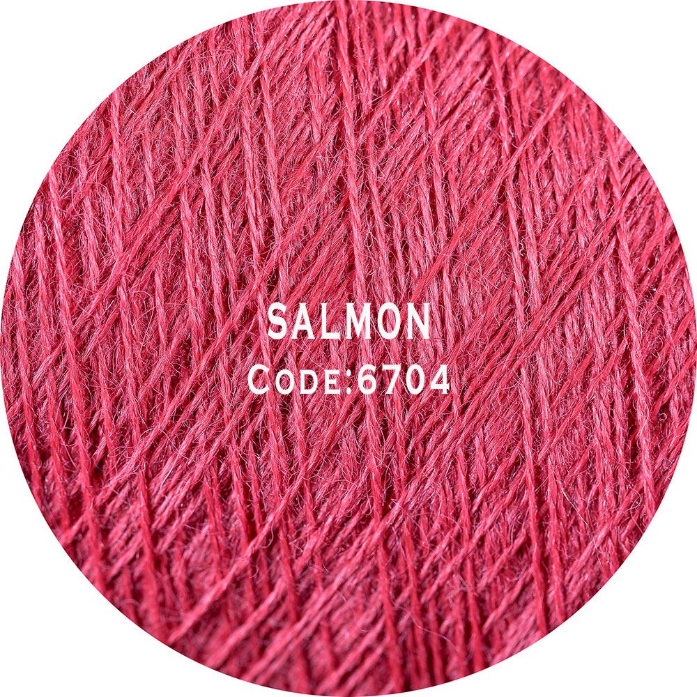 Salmon-6704