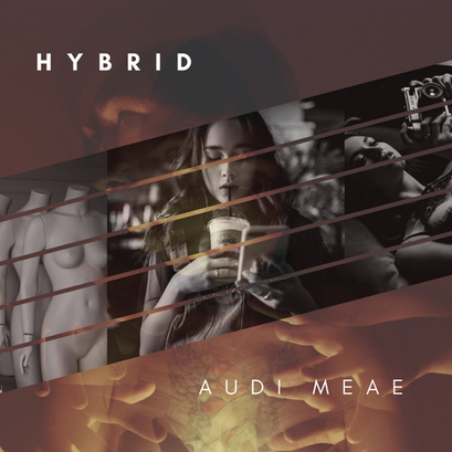 Single - Hybrid