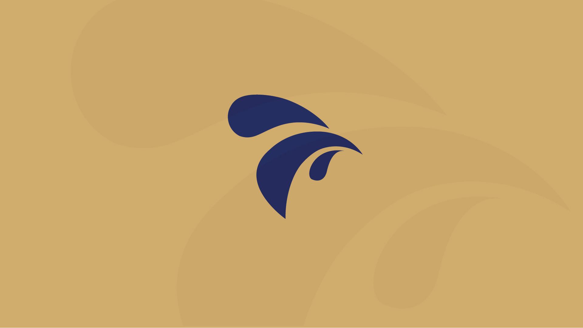 img-portfolio-portogallo-voadora (4).jpg