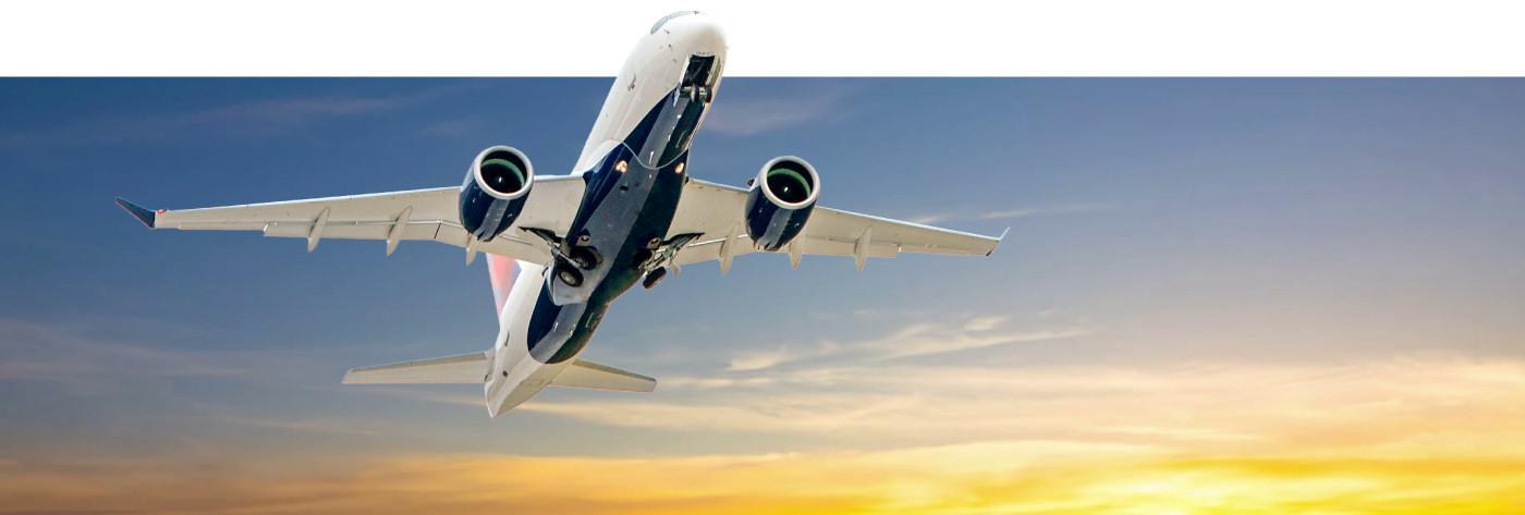 img-portfolio-fly-food-voadora (4).jpg