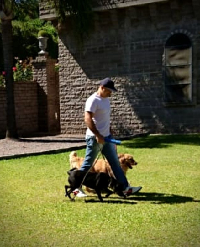 Dog Walker_1.jpg