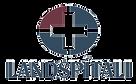 Landspitali_Logo_edited.png